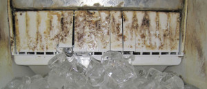 Slime-Ice-Machine-Contamination-300x129